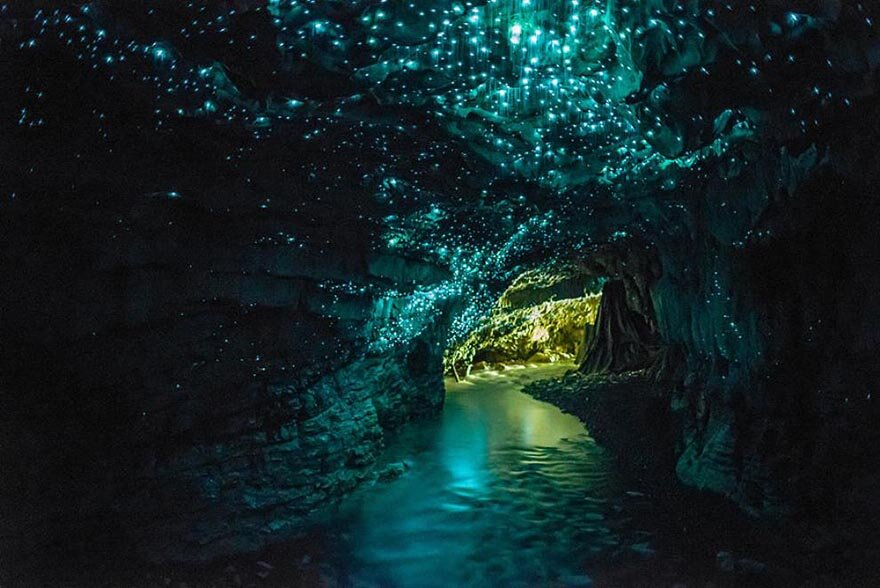Печера Світлячків інфомікс7